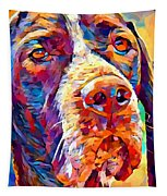Pointer Tapestry