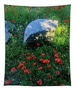 Poppies And Rocks Tapestry