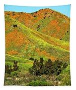 Poppy Hills And Gullies Tapestry by Mae Wertz