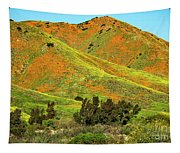 Poppy Hills And Gullies Tapestry