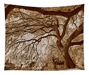 Portrait Of A Tree In Infrared Tapestry
