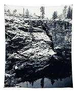 Post Falls Park In Snow  Tapestry
