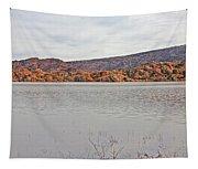 Prescott Arizona Watson Lake Hills Mountains Rocks Water Grasses Cloudy Sky 3142019 4920 Tapestry