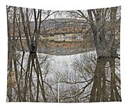 Prescott Arizona Watson Lake Trees Reflections Hill Rocks 3142019 4921 Tapestry