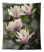 Pretty White And Pink Magnolia Tapestry