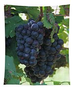 Purple Grape Bunches 13 Tapestry