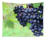 Purple Grape Bunches 21 Tapestry