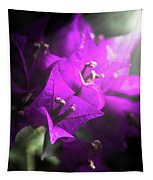 Rays Of Bougainvillea Tapestry