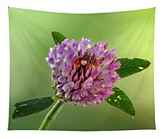 Red Clover Tapestry