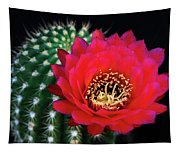 Red Hot Torch Cactus  Tapestry