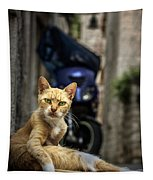 Red Cat With Green Eyes Tapestry