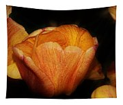 Red Orange Yellow Tulip Tapestry