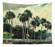 Red Shrt, Homosassa, Florida Tapestry
