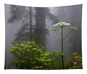 Redwoods By Crescent City 1 Tapestry