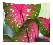 Reflections On The Calming Of Pink Tapestry