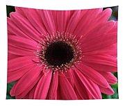 Rhapsody In Pink - Gerbera Daisy Tapestry