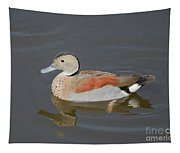 Ringed Teal Tapestry