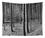 Road Passing Through Forest, Stuttgart Tapestry