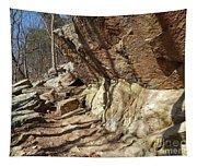 Rock Ledge Tapestry