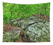 Rock On Green's Hill Tapestry
