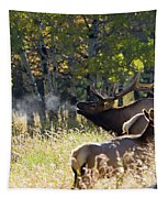 Rocky Mountain Bull Elk Bugeling Tapestry by Nathan Bush