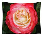 Rose And Rain - The Ice-cream Rose Tapestry
