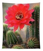 Rose Quartz Cactus Flower  Tapestry