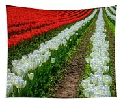Rows Of White And Red Tulips Tapestry