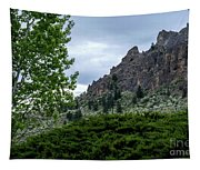 Saddle Rock Tapestry
