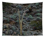 Saguaro Spines Tapestry
