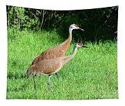 Sandhill Cranes Tapestry