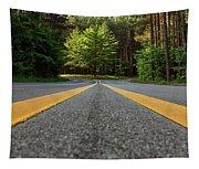 Scenic Drive 2 Tapestry