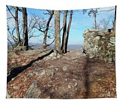 Scenic Horizon View Tapestry