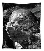 Sea Lion Pup Tapestry by Edward Fielding