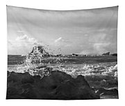 Seascape In Black And White Tapestry