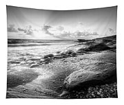 Seashells On The Seashore In Black And White Tapestry