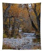 Serene Stream In Autumn Tapestry