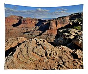 Shafer Canyon In Canyonlands Np Tapestry