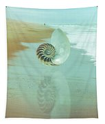 Shell Reflections In The Sand In The Soft Dawn Tapestry