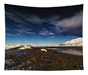 Shoreline With Driftice Tapestry