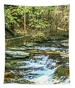 Small Waterfall In Creek And Stone Stairs Tapestry