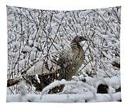 Smoke Phase Turkey 9623 Tapestry