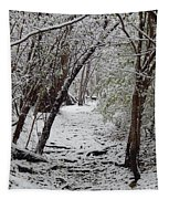 Snow In The Woods Tapestry