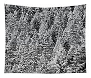 Snow On Evergreens Tapestry