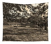 Solitude In Black And White With Sepia Tones Tapestry