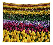 Spectacular Rows Of Colorful Tulips Tapestry