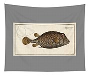 Spotted Trunk Fish  Tapestry