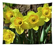 Spring Daffodils Tapestry