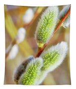 Spring Willow 4 Tapestry
