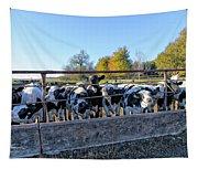 Steers Tapestry